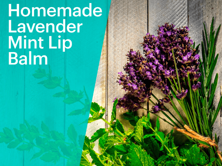 How to Make Your Own Natural DIY Lavender and Mint Chapstick (6 Steps)