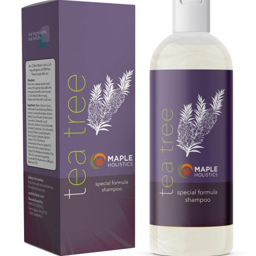 Maple Holistics Anti Dandruff Tea Tree Shampoo