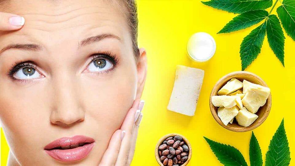Organic Shea Butter vs. Organic Cocoa Butter