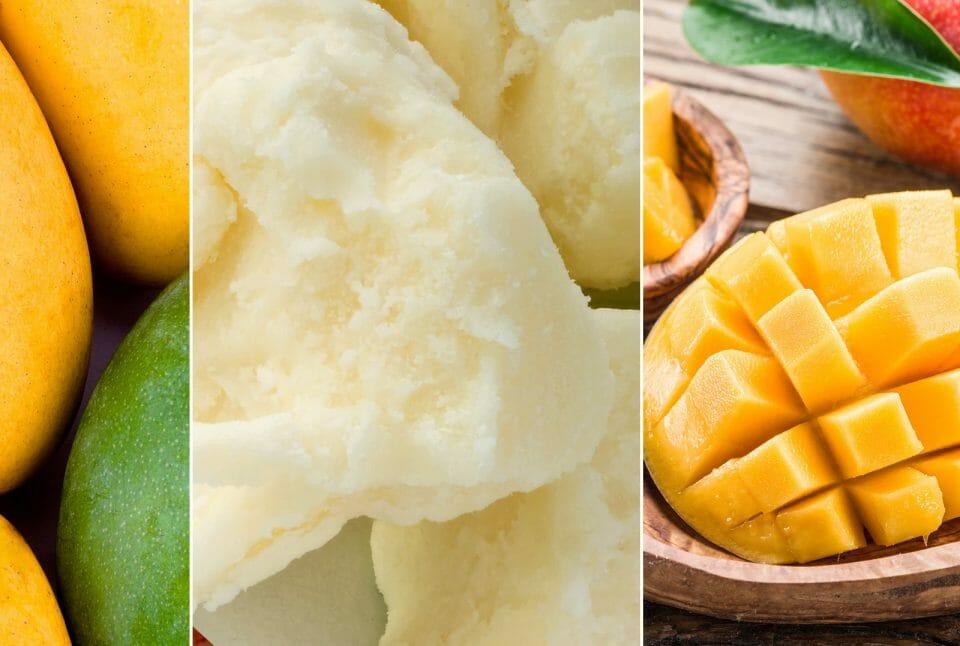 Organic Mango Butter vs. Organic Shea Butter